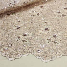 Lace with paillete